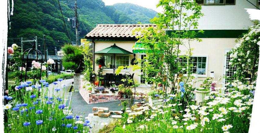 高尾山カフェ ぶなの木